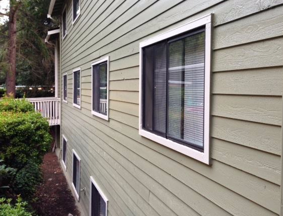 Painted Western Red Cedar Tight Knot Bevel Siding