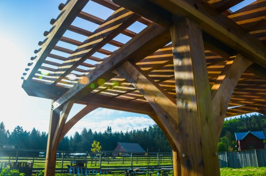 Pergola made from Full, Rough Sawn Appearance Western Red Cedar