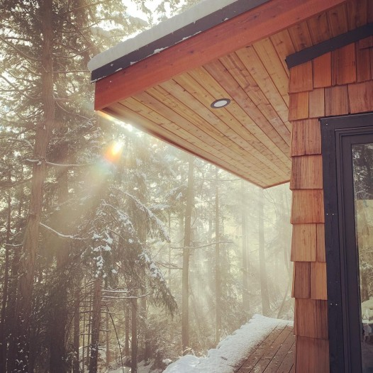 Western Red cedar shakes and soffit